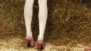 Die Heißeste Bauernhof Küken Auf Der Erde