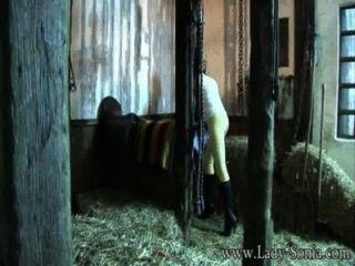Dame Sonia Die Peeping Tom In Den Ställen