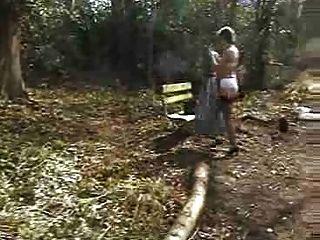 Reifen In Den Wald