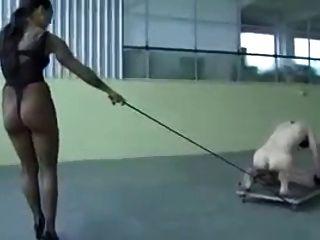 Herrin Ausbildung Ihren Sklaven