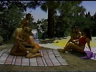 Barbara Wagt - Surf Sand Und Sex