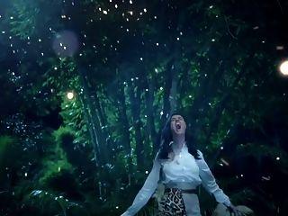 Katy Perry Roar (porno-musikvideo)